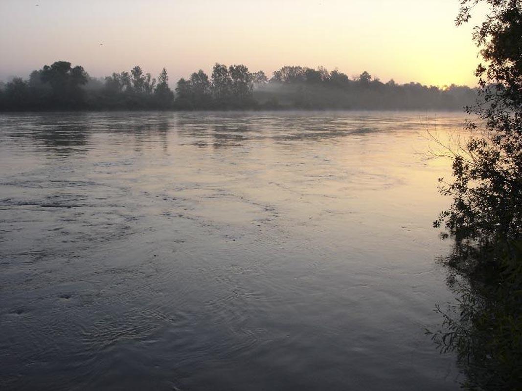 Općina Novo Virje